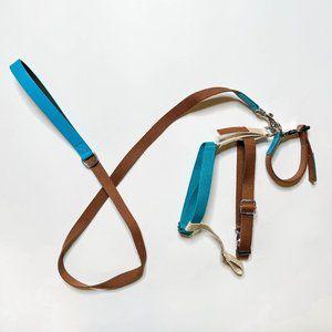 Zara Multi-Coloured Leash, Collar & Harness Bundle